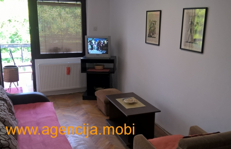 Apartman Dzeri Sokobanja - dnevna soba sa kaucem na rasklapanje , televizor sa kablovskom, izlaz na terasu